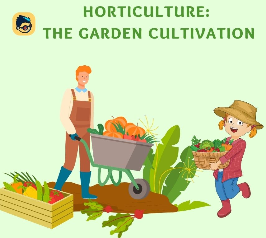 Horticulture: The Garden Cultivation